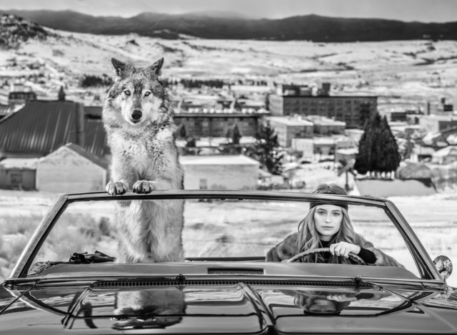 David Yarrow, 'Bonnie and Clyde', 2020, Photography, Archival Pigment Print, Samuel Lynne Galleries