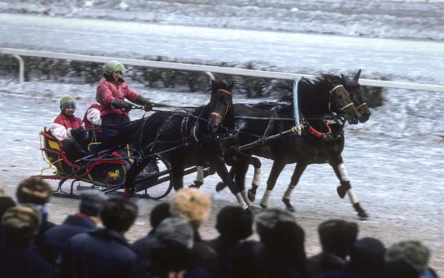 , 'Sleigh racing at the Central Moscow Hippodrome, USSR ,' 1984, Ney Gallery & Prints