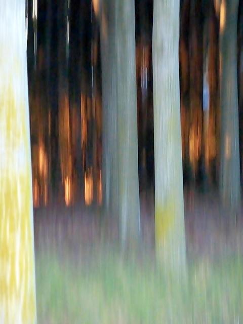 , 'Sub Noctem 58,' , Photo12 Galerie