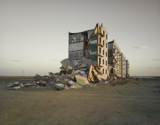 , 'The Aral Sea I (Officer's Housing), Kazakhstan,' 2011, Flowers