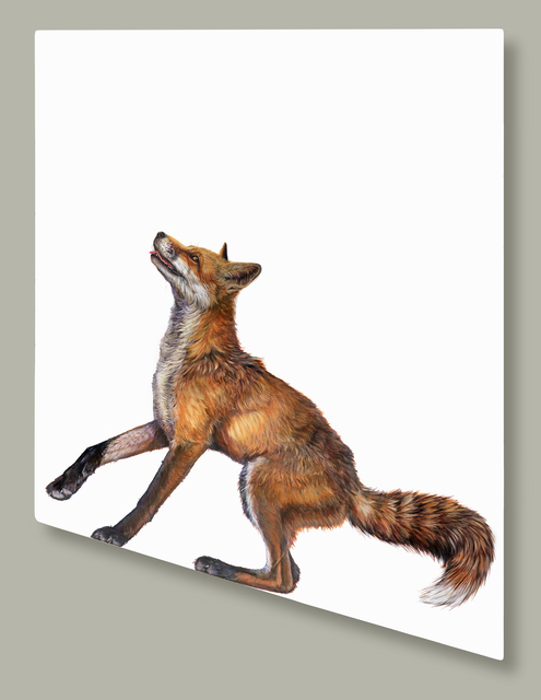 , 'Expectant Fox,' 2017, The Biscuit Factory