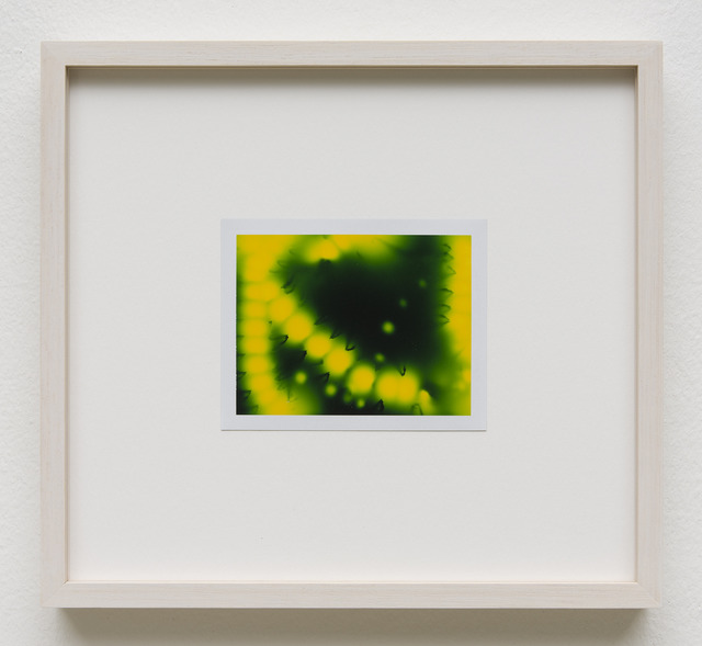 , 'Photuris #1,' 2013, Galerie Crone