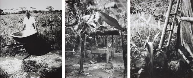 , 'ESTENOPEICAS RURALES - FAMILY VIVAS - CABUVARO,' 2015, Dohyang Lee