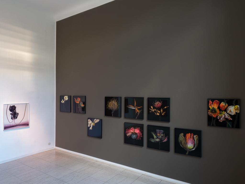 Installation shot exhibition »Lumineszenzen« by Kathrin Linkersdorff