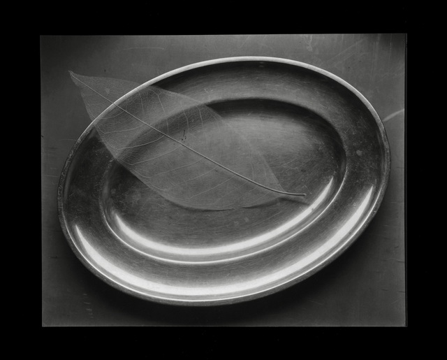, 'Still Life with Plate - The Leaf,' 1995, see+ Gallery