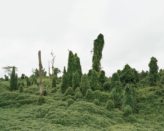 , 'Untitled,' , Galerie Wouter van Leeuwen