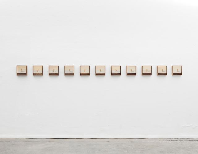 , 'Choreography of species: Rosa Tannenzapfen 1-11,' 2013, Daniel Marzona