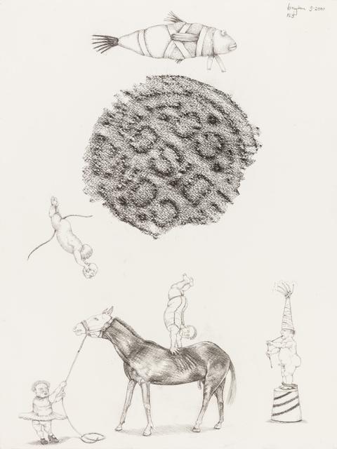 , 'Dwerg akrobate,' 2000, Stevenson