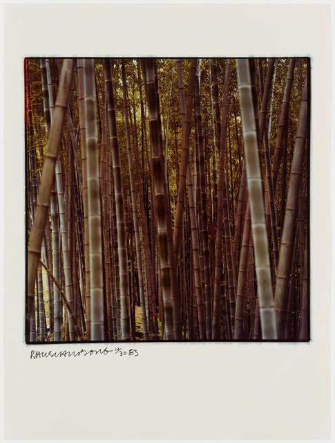 Robert Rauschenberg, 'Studies for Chinese Summerhall', 1983, Graphicstudio USF