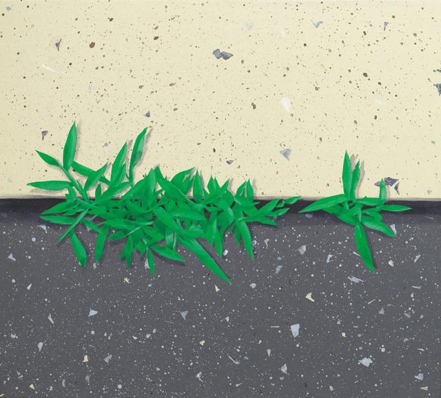 , 'Crabgrass 1 ,' 2017, Tracey Morgan Gallery