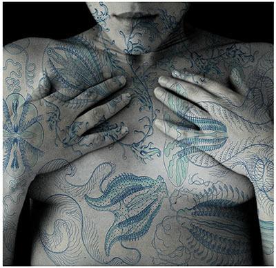 Tatiana Parcero, 'Universus #13', 2013, jdc Fine Art
