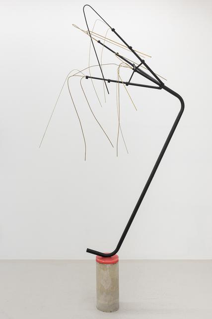 , 'Cornu Copia Copia Topia - dracena peacock palm,' 2016, Annka Kultys Gallery
