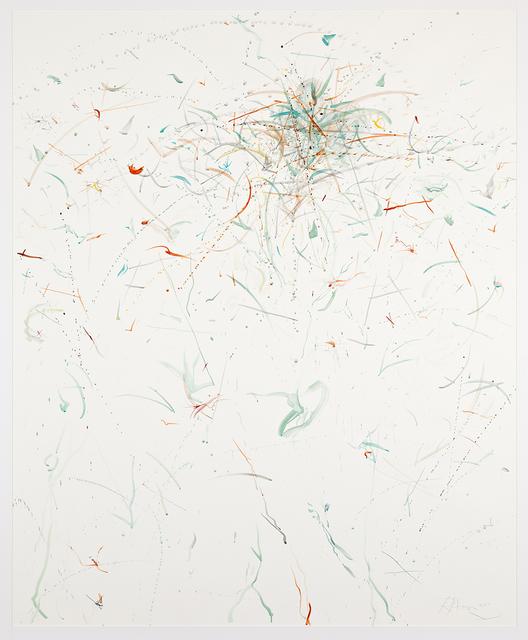 , 'Luftwurzein, wundgepeitscht,' 2011, Galería Pelaires