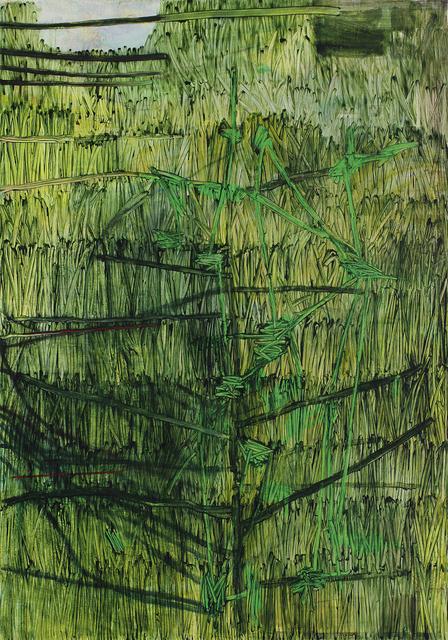 , 'Jenkins Grass,' 2009, Galerie Zwart Huis