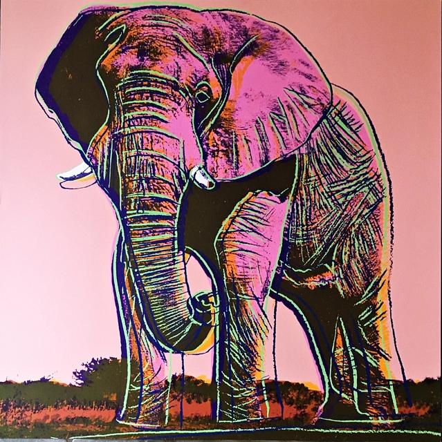 Andy Warhol, 'African Elephant', 1983, Alpha 137 Gallery