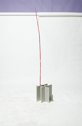 , ' untitled,' 2011, Collicaligreggi