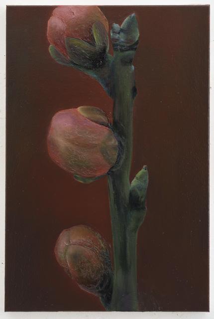 , 'Darling Buds,' 2015, Galerie Onrust