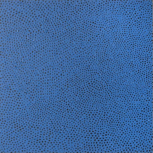 , 'Infinity-Nets PEAA,' 2013, Antoine Helwaser Gallery