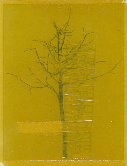 , 'Fake tree man (bawd),' 2014, Arróniz Arte Contemporáneo