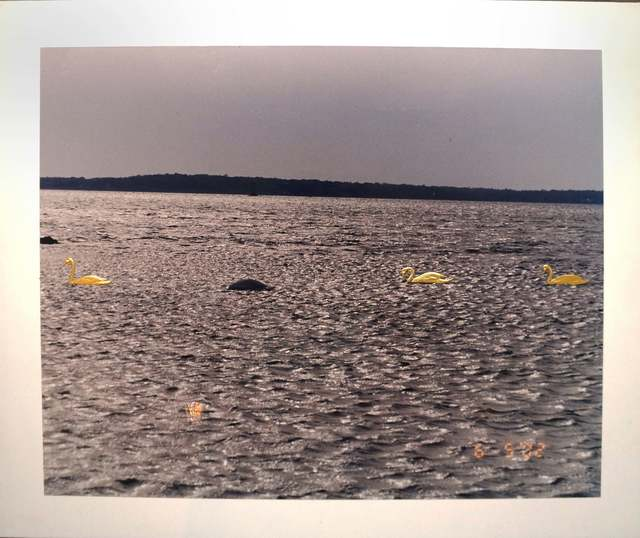 , 'Three Swanlake,' 2002-2003, Vivian Horan Fine Art