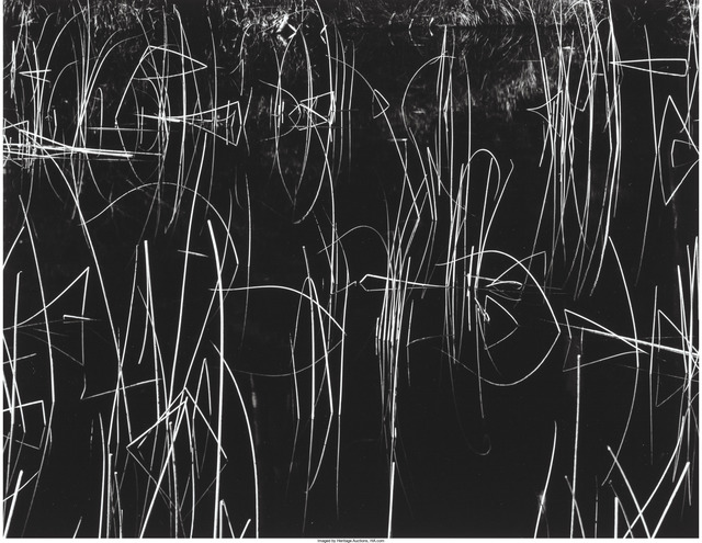 Brett Weston, 'Reeds and Black Water', 1975, Heritage Auctions