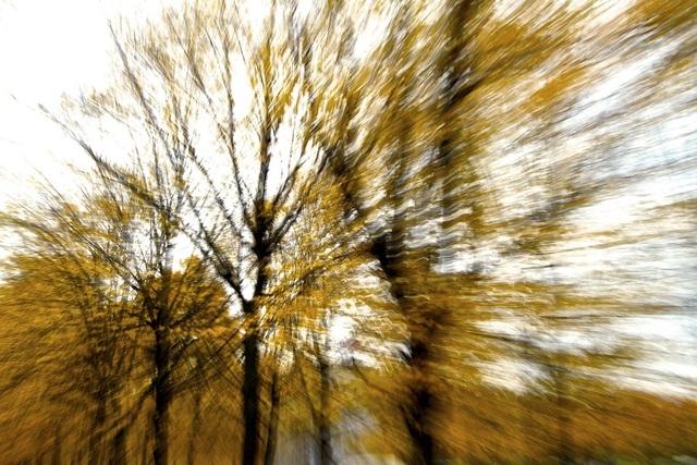 , 'Fall,' , Inn Gallery