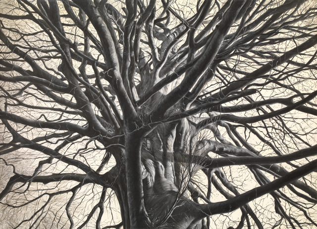 , 'donotclickhru (tree),' 2015-2016, Galleria Pack