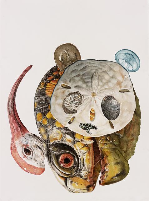 , 'Panda,' 2014, Joshua Liner Gallery