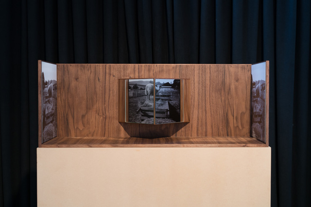 , 'Lambscapes Stereo #2,' 2017-2018, Gallery 16