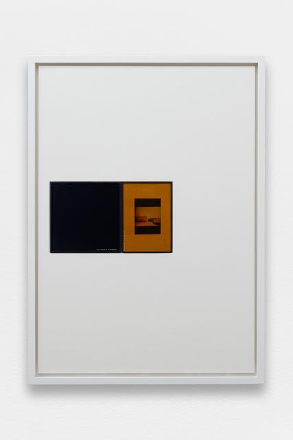 , 'IRND Platinium/Sepia/6,' 2016, Galerie Allen