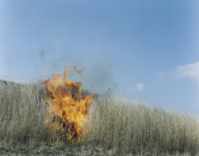 , 'Untitled, from the series Ametsuchi,' 2012, ROSEGALLERY