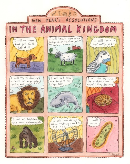 , 'New Year's Resolutions in the Animal Kingdom ,' , DANESE/COREY