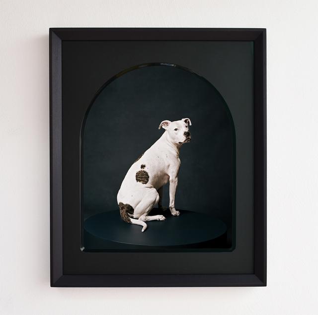 , 'Zero,' 2017, Purdy Hicks Gallery