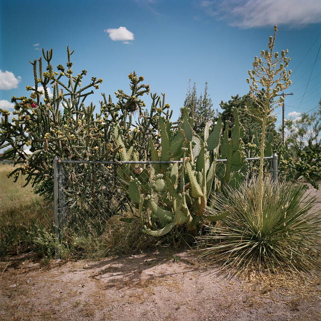 , 'Fenced In. Marfa, Texas,' 2016, Barry Whistler Gallery