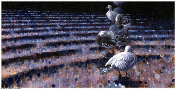Ewoud De Groot, 'Preening Snowgeese', 2007, Gerald Peters Gallery