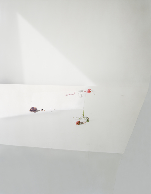 """, 'Untitled #21, from the series """"Ill Form & Void Full"""",' , Yancey Richardson Gallery"""