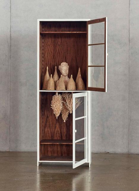 , 'Bois Dormant - Cabinet 5,' 2015, CFHILL
