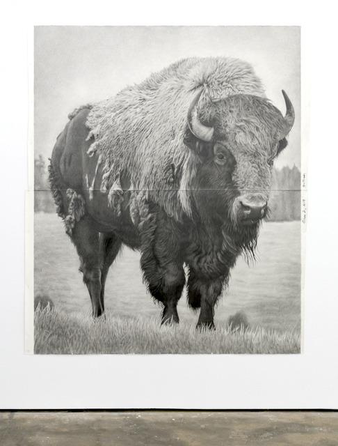 Karl Haendel, 'Bison 2', 2018, Wentrup
