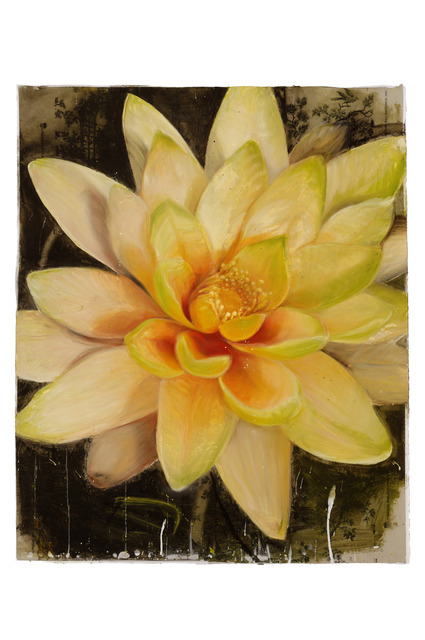 , 'Yellow Waterlily,' 2012, Walter Wickiser Gallery