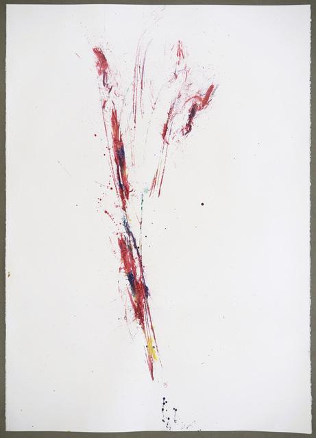 Maria Thereza Alves, 'Unrejected wild flora ', 2017, Alfonso Artiaco