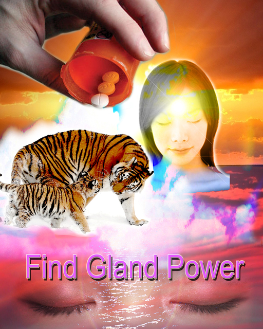 , 'Find gland power,' 2015, envoy enterprises