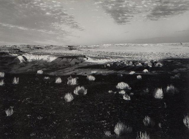 Paul Caponigro, 'Petrified Forest, Arizona Landscape', 1970, Heritage Auctions
