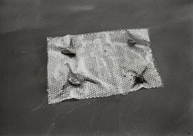 , 'Target at Aquatic Water,' , Tomio Koyama Gallery