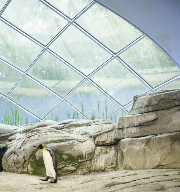 , 'Penguin and Dome,' , Galerie Dumonteil