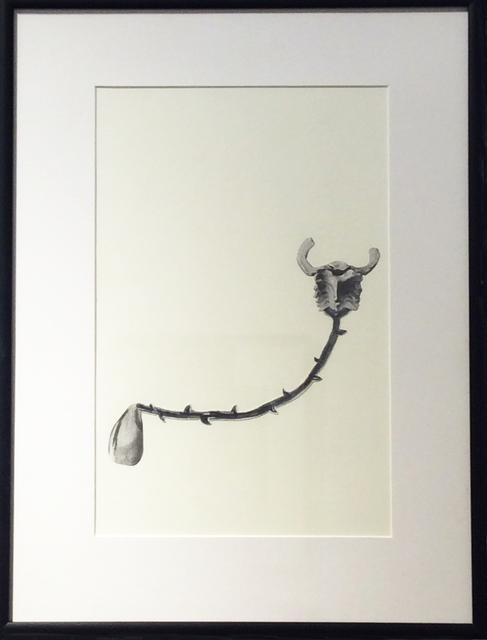 , 'Untitled 1,' 2014, MIYAKO YOSHINAGA
