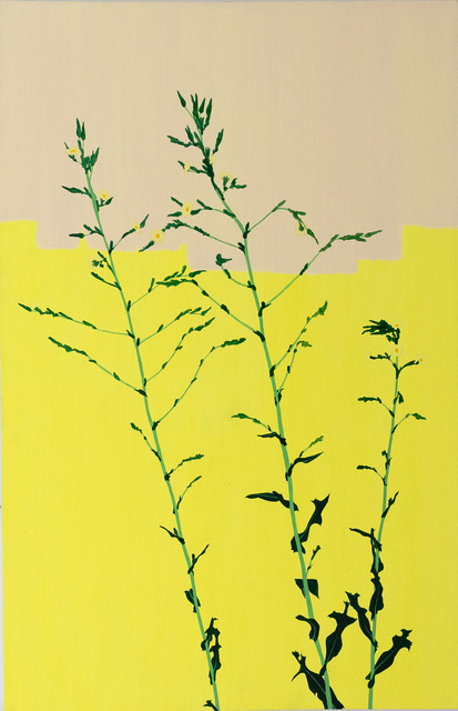 Hannah Cole, 'Life After a Hard Winter (Yellow on Yellow Weed)', 2017, Tracey Morgan Gallery
