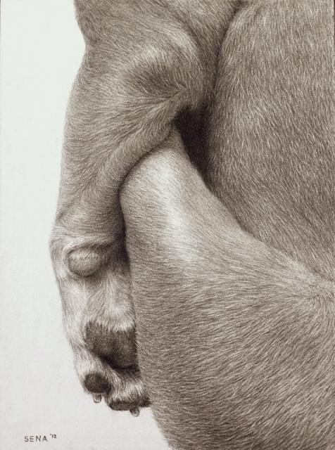 , 'Beehive,' 2013, Accesso Galleria