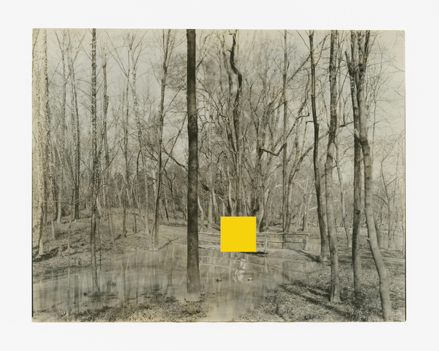 , 'I Belong to the Cypress Hours  ,' 2016, Purdy Hicks Gallery