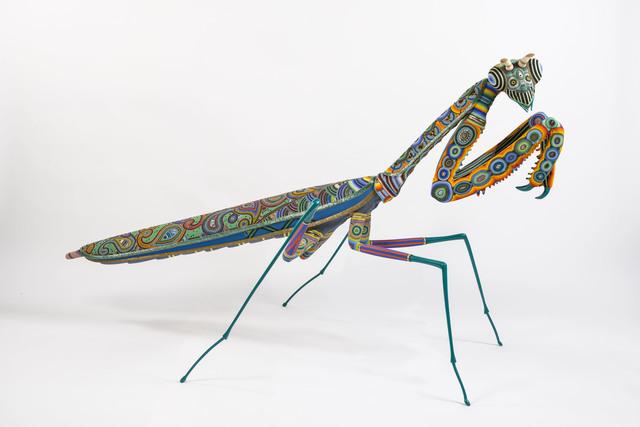 , 'Das Bug,' 2015, Duane Reed Gallery
