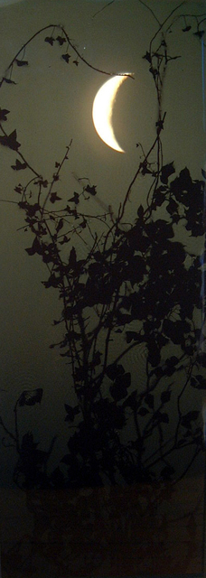 , 'Crescent Moon Ivy,' 2002, Purdy Hicks Gallery